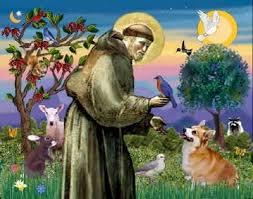 Imagem de Oração de São Francisco   (Oração por um animal doente)